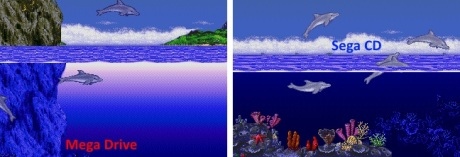 Ecco the Dolphin MD SCD